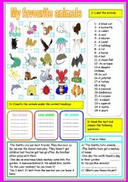 English Worksheets: my favourite animals