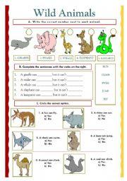 English Worksheets: Wild animals (07.02.10)