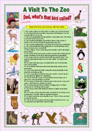 English Worksheets:  A Visit To The Zoo