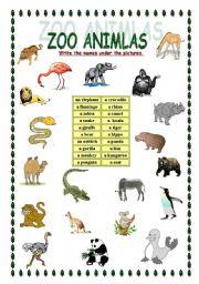 ZOO animals - worksheet by Kate
