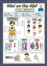 English Worksheets: WHAT ARE THEY LIKE?