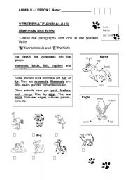 English Worksheets: Mammals and birds for all