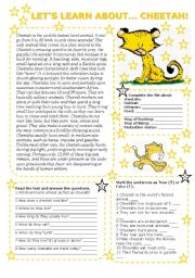 English Worksheets: LET�S LEARN ABOUT... CHEETAH! (2 pages with key)