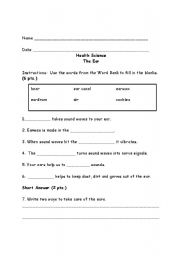English Worksheets: The Ear