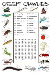 English Worksheets: Creepy Crawlies - Insects
