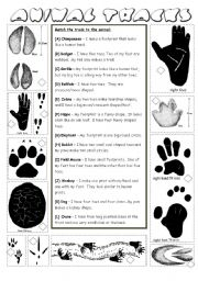 Australian Animal Tracks | Australian animals, Worksheets and Animal