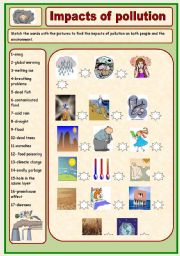 English Worksheet: Impacts of pollution