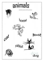 English Worksheets: animals- link the pictures with the words