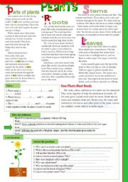 English Worksheet: The science lesson- PLANTS