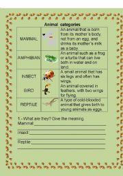 English Worksheets: ANIMAL CATEGORY