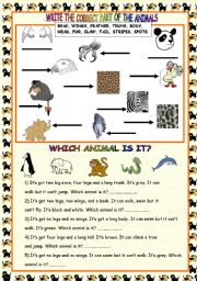 English Worksheets: PART OF ANIMALS