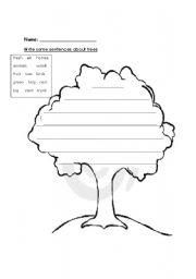English Worksheets: Trees