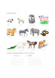 English Worksheets: Find the animals