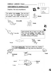 English Worksheet:  Vertebrates III : Amphibians,reptiles and fish