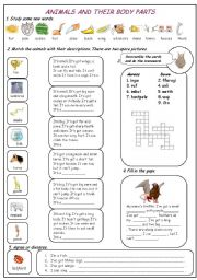 English Worksheet: Animals and their body parts