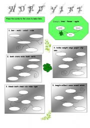 English Worksheets: Word vine