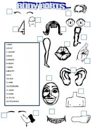 English Worksheets: MATCH THE BODY PARTS