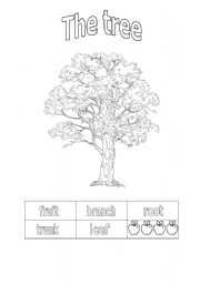 English Worksheet: the tree parts