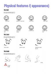 English Worksheets: physical features