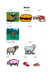 English Worksheets: animals and meats