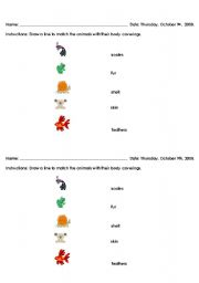 English Worksheets: Body Coverings