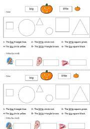 English Worksheets: sizes