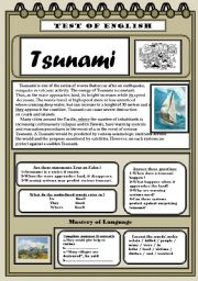 Tsunami TEST OF ENGLISH
