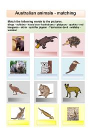 English Worksheet: Australian animals matching or flashcards