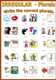 Plural - Irregular nouns