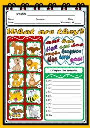 English worksheet: WHAT ARE THEY? (ANIMALS)