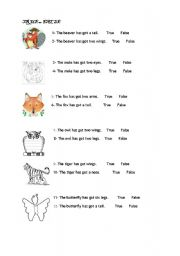 English Worksheets: True or False for animals