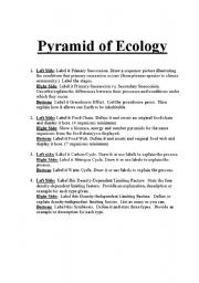 Printables Ecology Worksheets english teaching worksheets ecology pyramid of ecology