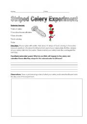 English worksheets: Colored Celery Experiment