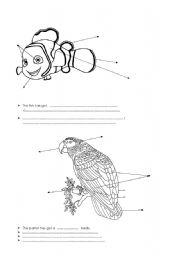 English Worksheets: animals colouring page