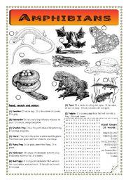 English Worksheets: Amphibians - Pond Life