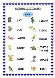 english worksheet pets picture dictionary