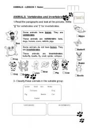 Printables Vertebrates And Invertebrates Worksheets english teaching worksheets invertebrates vertebrates and invertebrates