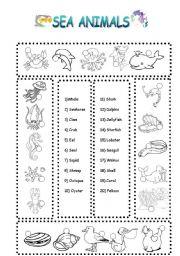 English Worksheets: sea animals