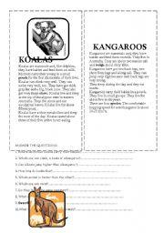 English Worksheets: koalas and kangaroos