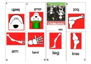 English Worksheets: Minibook Funnybones