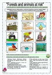 English Worksheets: forests and animals at risk