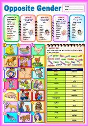 English Worksheet: Opposite Gender