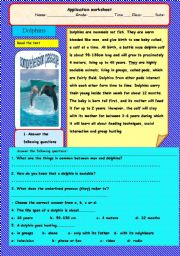English Worksheet: Dolphins-A comprehension passage