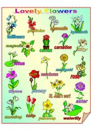 English Worksheet: Lovely Flowers **fully editable