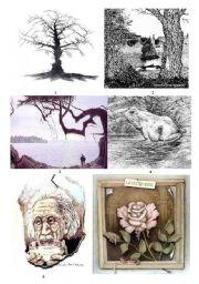 English Worksheets: Optical llusions