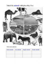 English Worksheets: Animals grouping activity