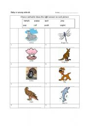 English Worksheets: Young animals
