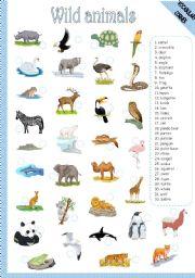 English Worksheet: WILD ANIMALS - MATCHING