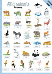 English Worksheet: WILD ANIMALS - PICTIONARY