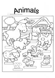 colour the animals and write the names